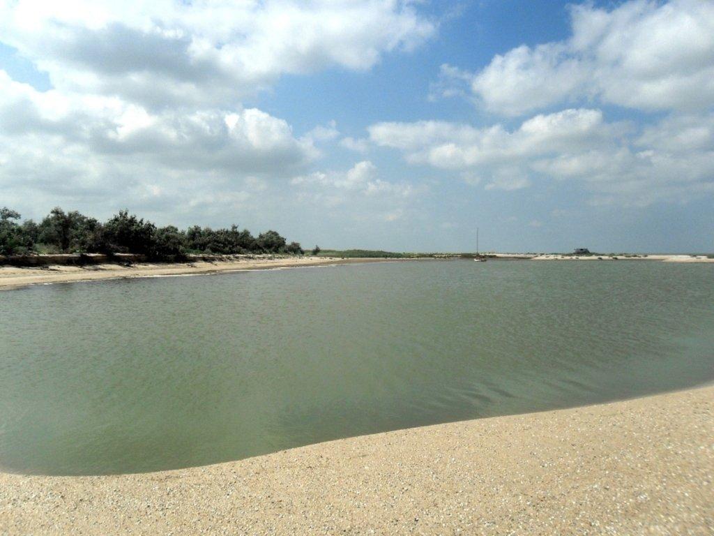 В ясный день, у моря Азовского, август, на Ясенской косе... 033. 008