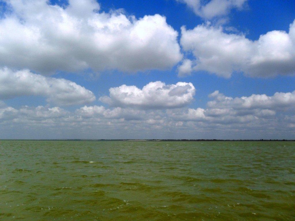 В ясный день, у моря Азовского, август, на Ясенской косе... 033. 011