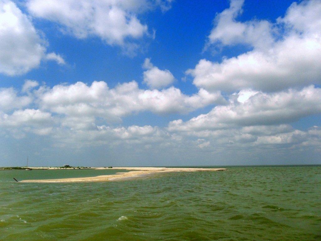 В ясный день, у моря Азовского, август, на Ясенской косе... 033. 010