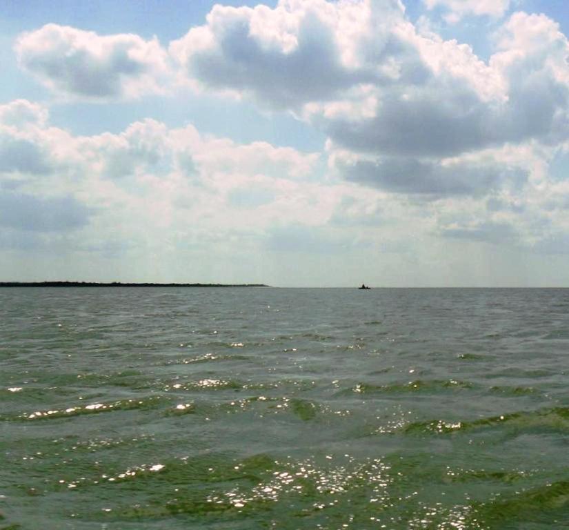 Выход в море, с парусом, в проливе, у Азовских берегов... 034. 010