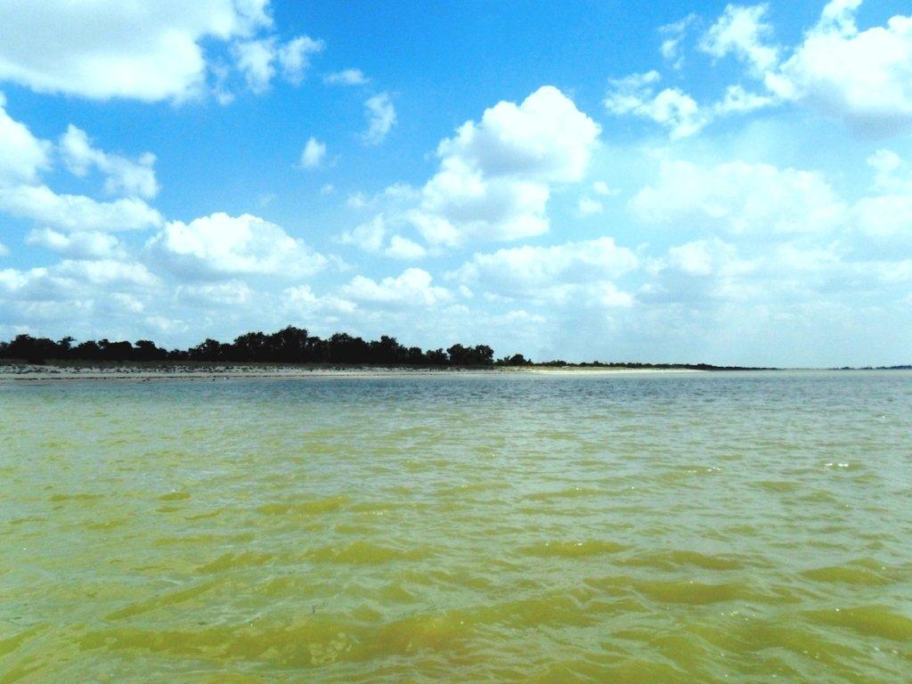 Выход в море, с парусом, в проливе, у Азовских берегов... 034. 012