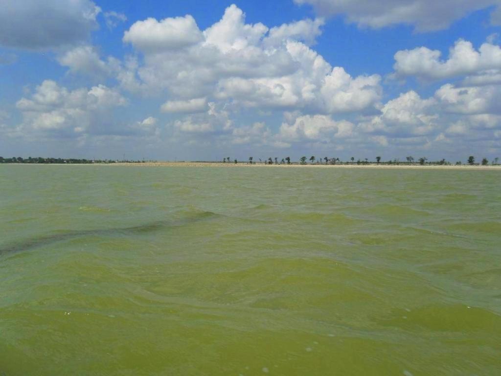 На морском просторе, солнечный день, у Азовских берегов, в августе... 035. 004