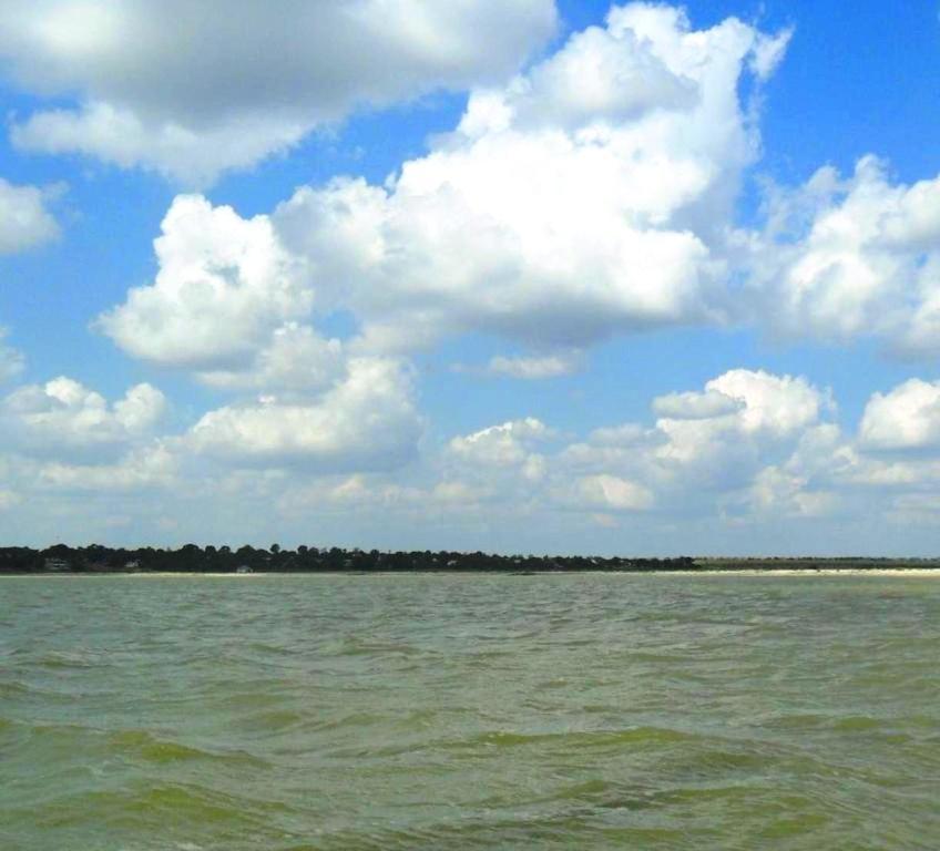 На морском просторе, солнечный день, у Азовских берегов, в августе... 035. 011