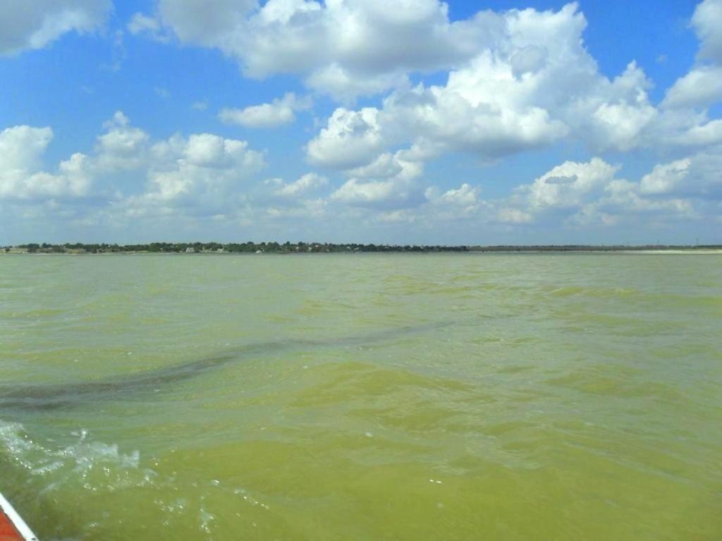 На морском просторе, солнечный день, у Азовских берегов, в августе... 035. 009
