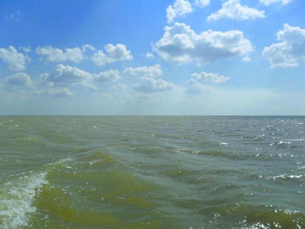 На морском просторе, солнечный день, у Азовских берегов, в августе... 035. 012
