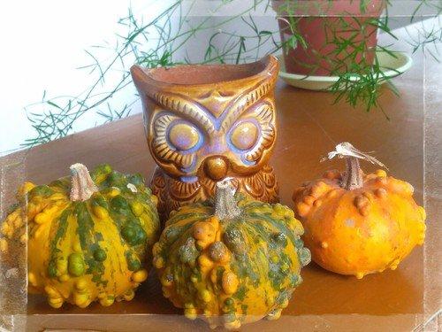 Осенний натюрморт с аромалампой-совой.