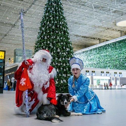 Новый год в аэропорту Симферополя!