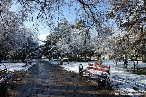 Первый снег в Симферополе.