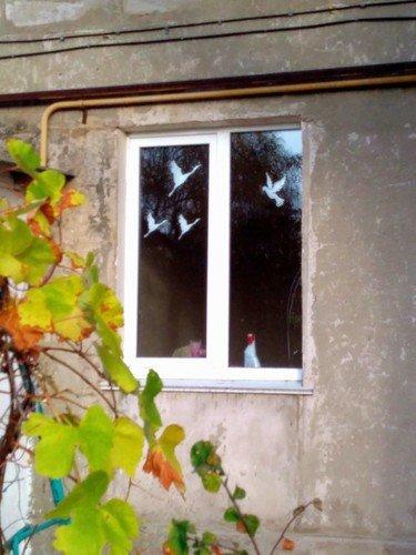 Журавли на окне.