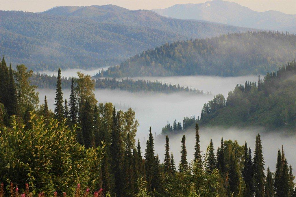 Белой змеёй ползёт по речной долине туман