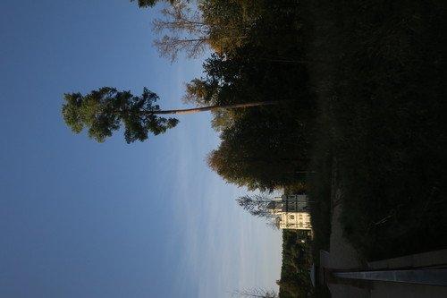 https://fs3.fotoload.ru/f/0121/1609661931/500x500/ff17ee31f0.jpg