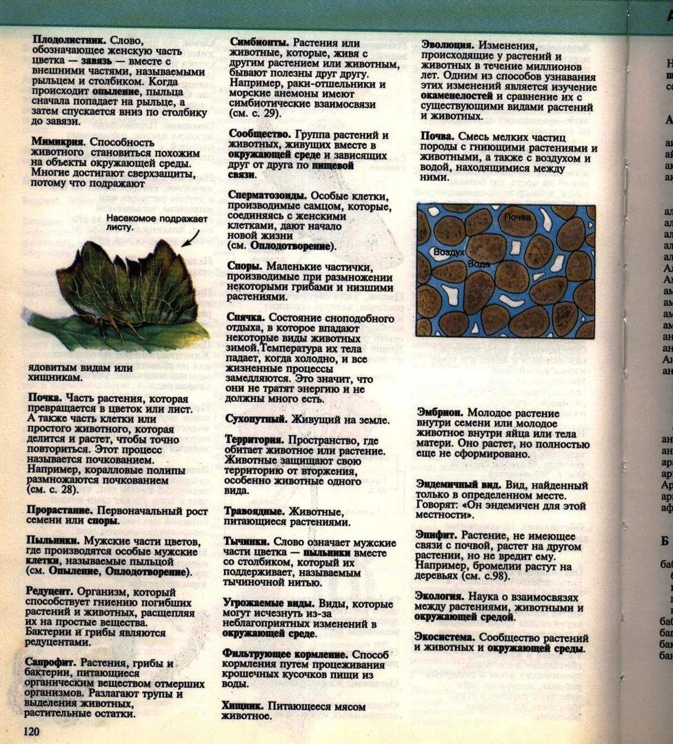 Живой мир. Энциклопедия. Росмэн. 114.jpg