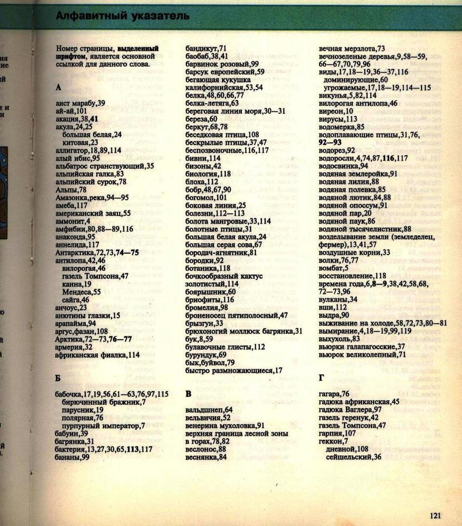 Живой мир. Энциклопедия. Росмэн. 115.jpg