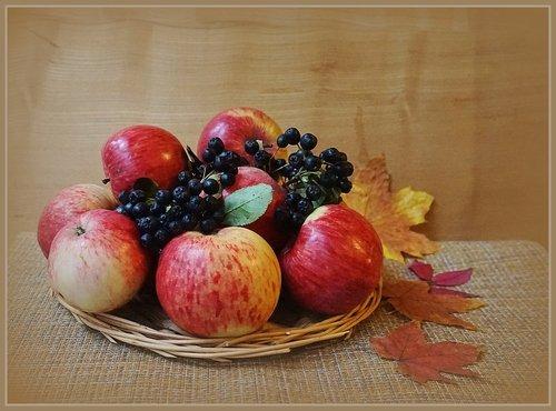 Август дозреет яблоком