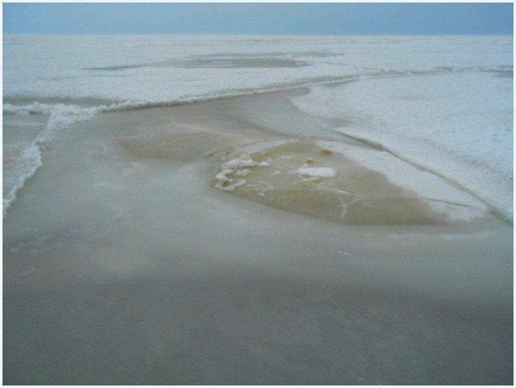 Зима, в походе пешем, февраль, Азовское побережье... 002. 002