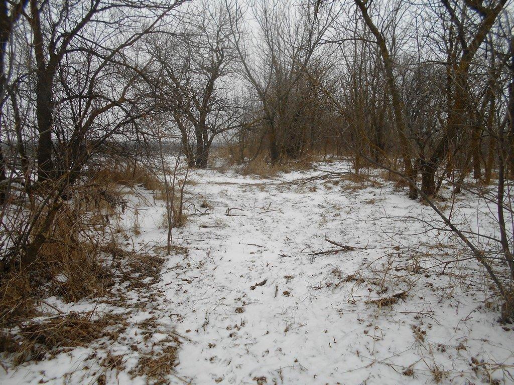 Зима, в походе пешем, февраль, Азовское побережье... 002. 008