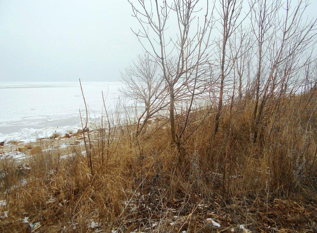 У моря..., В походе зимнем, Азовское побережье, туризм, февраль...003. 001