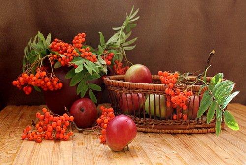 натюрморт с яблоками и рябиной