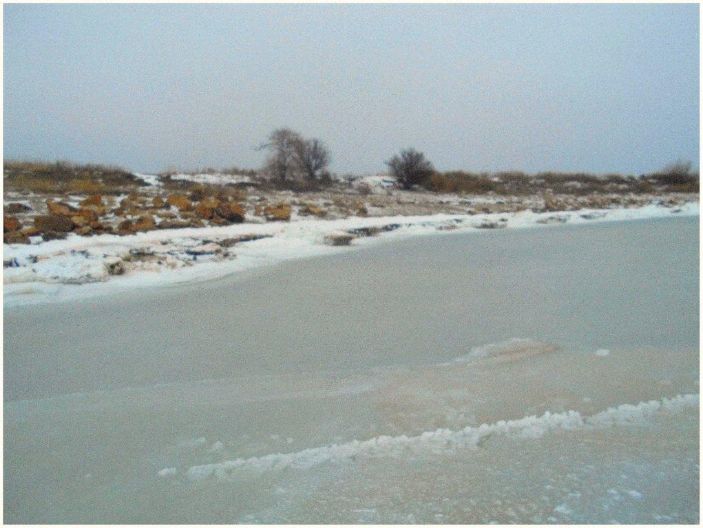 Из леса к морю, февраль, в походе, лёд, снег... 004. 012