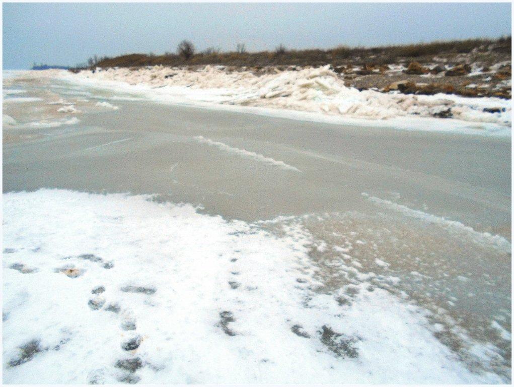 Из леса к морю, февраль, в походе, лёд, снег... 004. 013