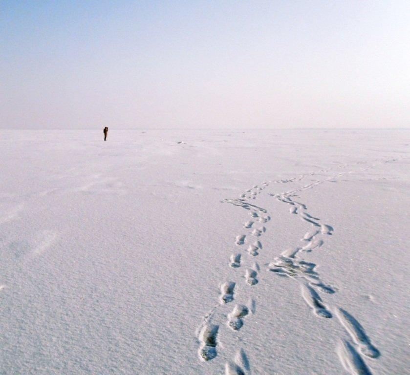 С рюкзаком, море заснеженное, на косу Ачуевскую... 002. 003