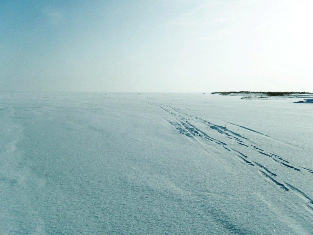 С рюкзаком, море заснеженное, на косу Ачуевскую... 002. 011