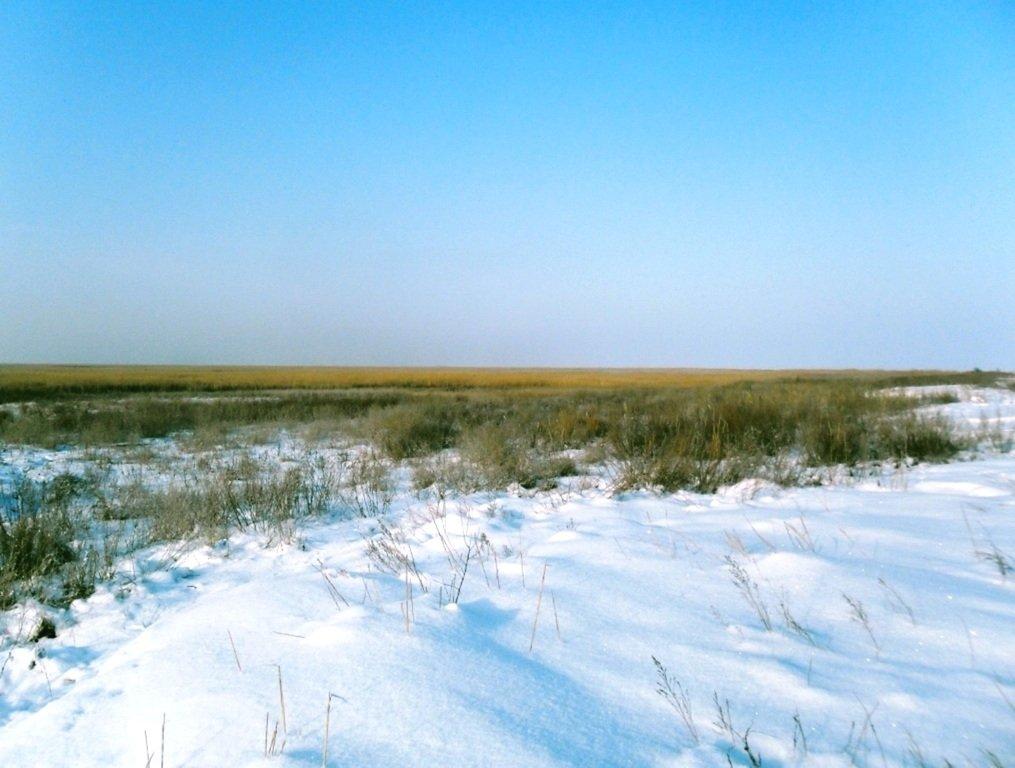 С рюкзаком, море заснеженное, на косу Ачуевскую... 002. 008
