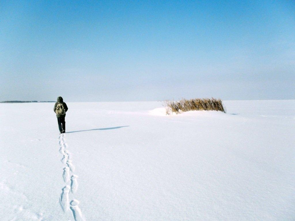 У косы Ачуевской, Зима, снег, Азовское побережье... 003. 005