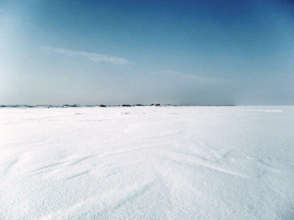 У косы Ачуевской, Зима, снег, Азовское побережье... 003. 001