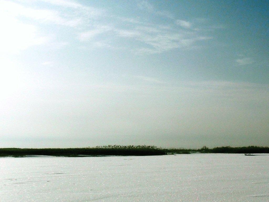 У косы Ачуевской, Зима, снег, Азовское побережье... 003. 003