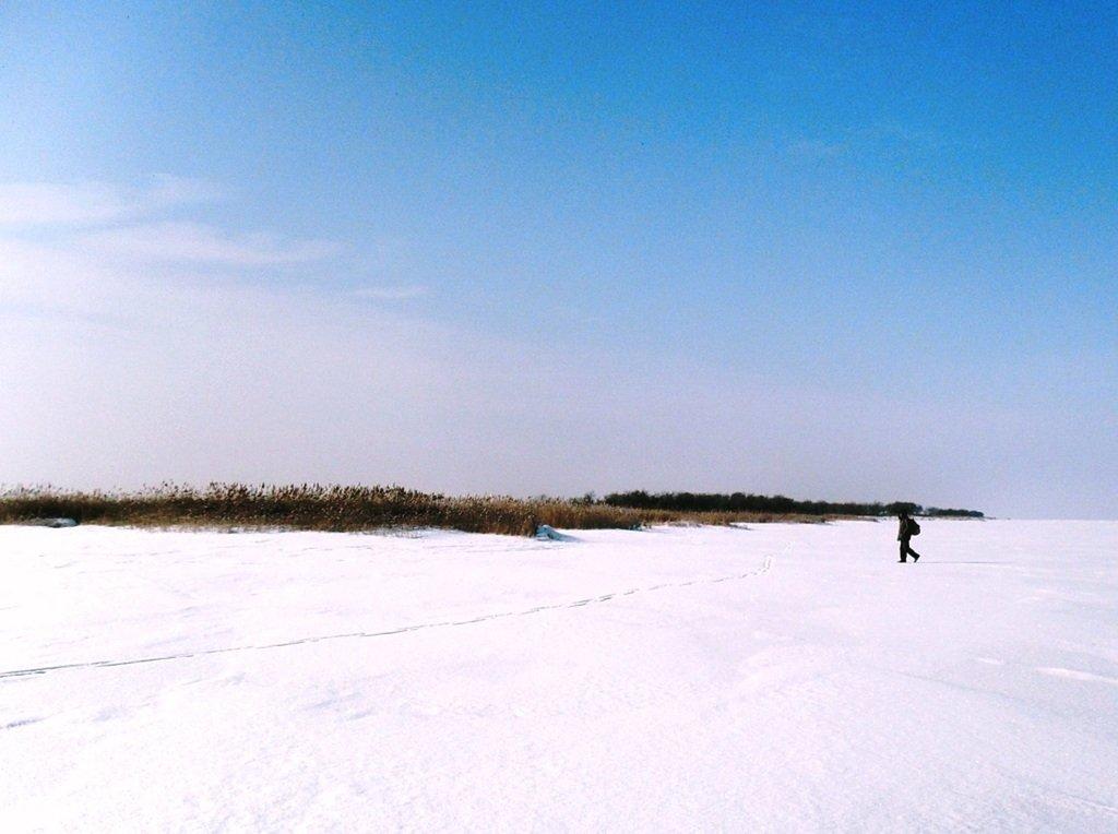 У косы Ачуевской, Зима, снег, Азовское побережье... 003. 008