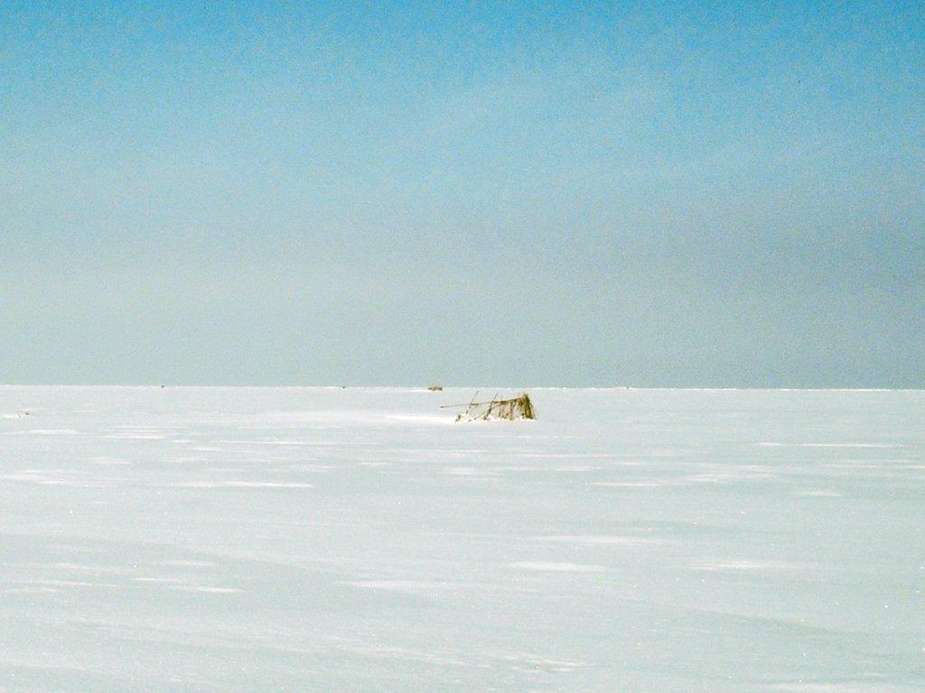 У косы Ачуевской, Зима, снег, Азовское побережье... 003. 006