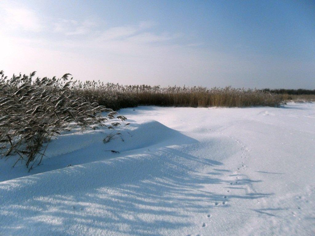 У косы Ачуевской, Зима, снег, Азовское побережье... 003. 010