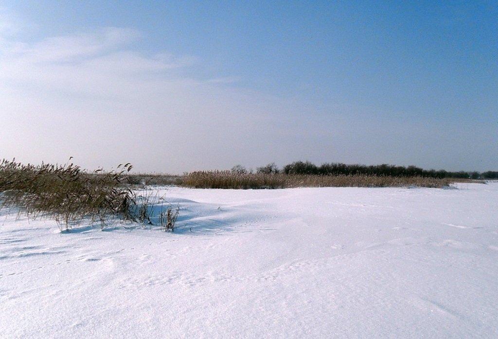 У косы Ачуевской, Зима, снег, Азовское побережье... 003. 011