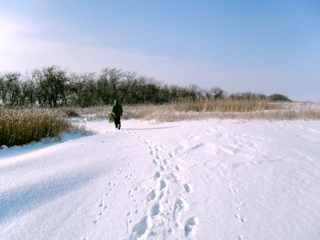 В зимней сказке, на косе Ачуевской, февраль, туризм...004. 004