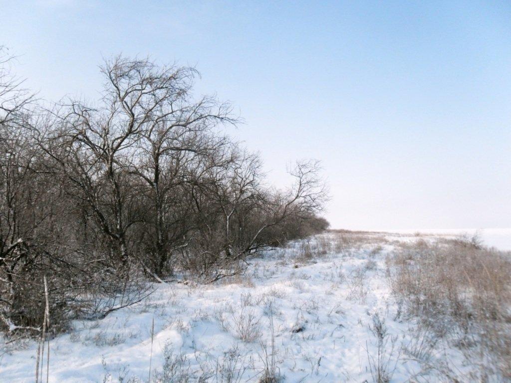 В зимней сказке, на косе Ачуевской, февраль, туризм...004. 006