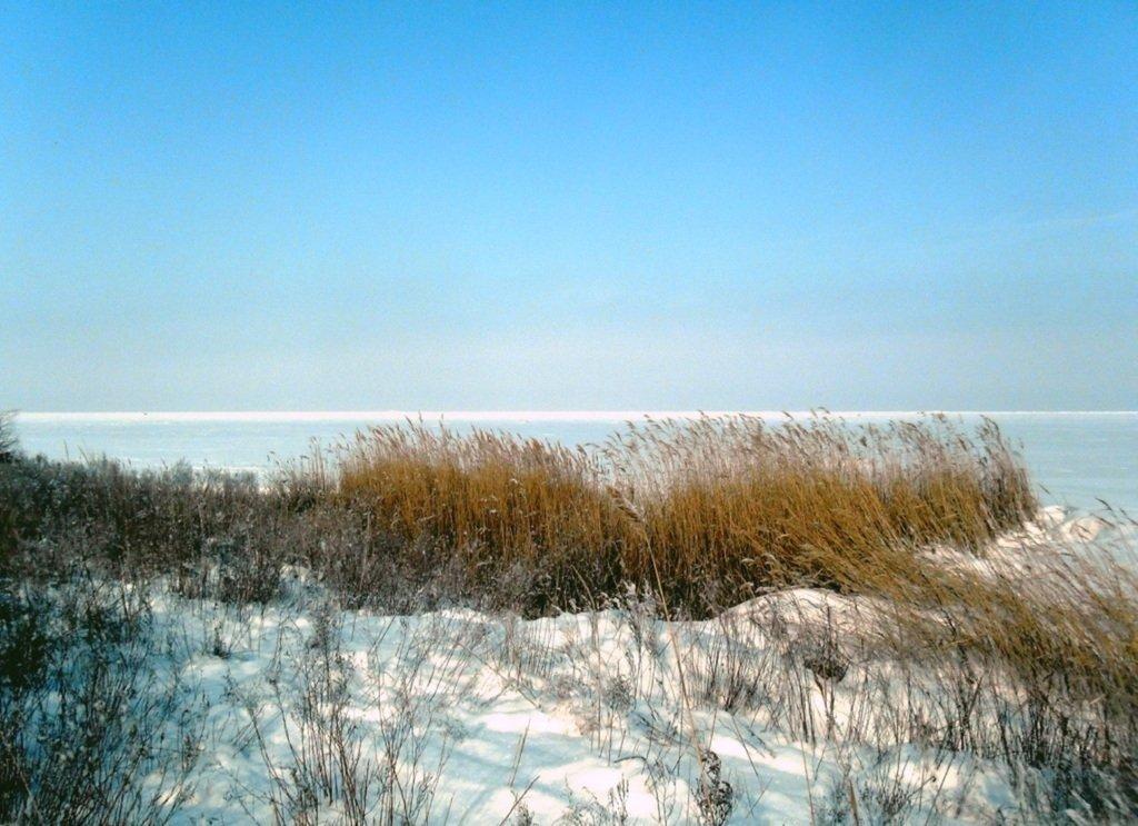 В зимней сказке, на косе Ачуевской, февраль, туризм...004. 005