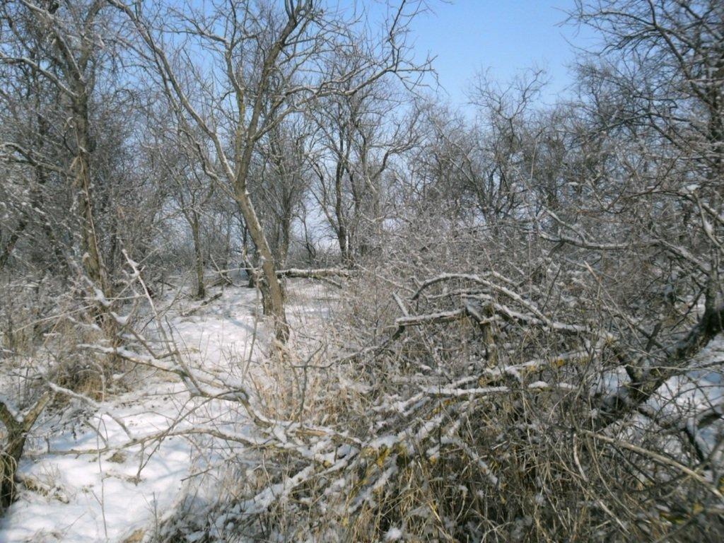 В зимней сказке, на косе Ачуевской, февраль, туризм...004. 012