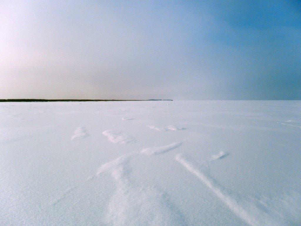 В походе снежном, Азовское побережье, февраль... 005. 006