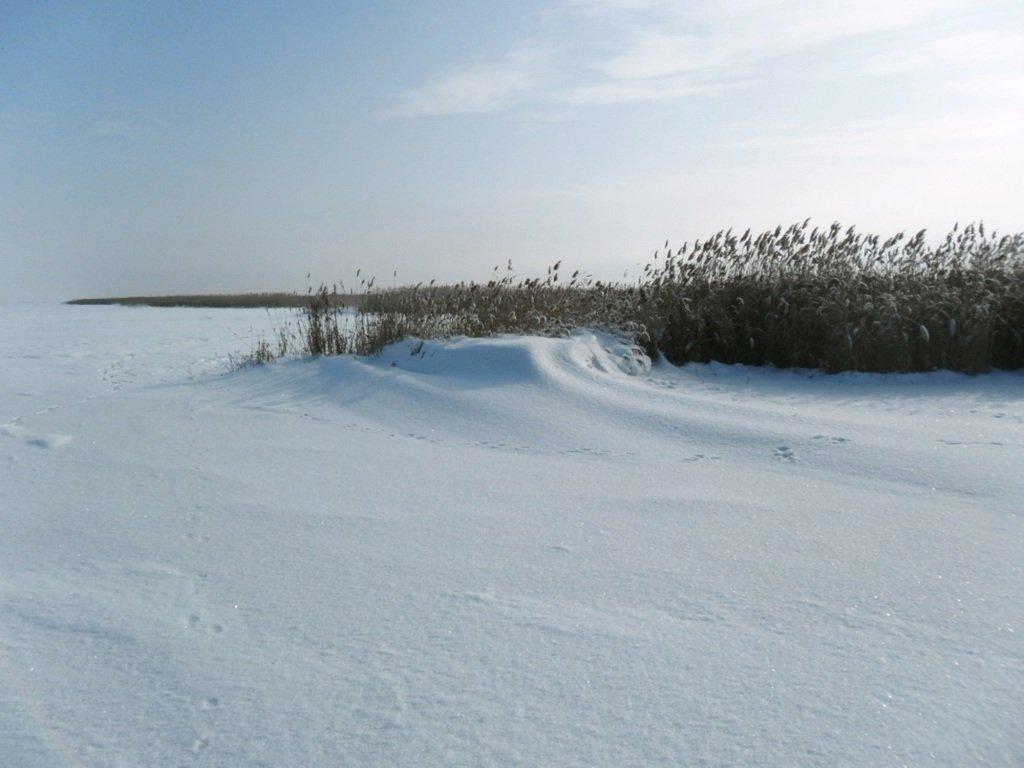 В походе снежном, Азовское побережье, февраль... 005. 005