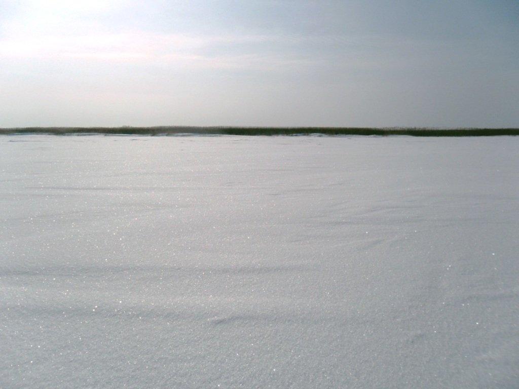 В походе снежном, Азовское побережье, февраль... 005. 010