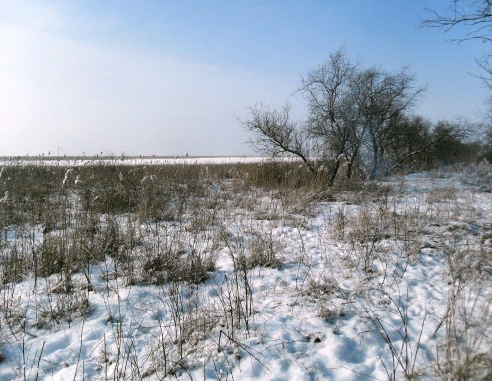 В походе снежном, Азовское побережье, февраль... 005. 001