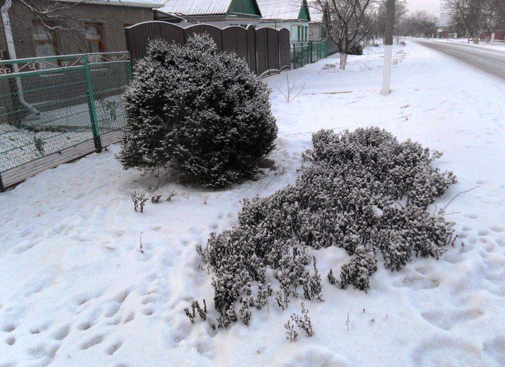 Перед выходом на лёд, туристы в походе... Город в снегу, февраль... 001. 001. 002
