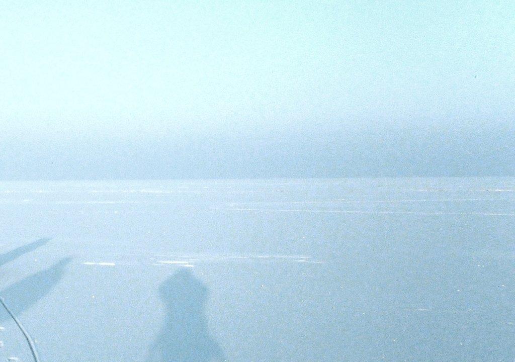 На снежной дороге нехоженной, Зима на море Азовском, февраль, Природа