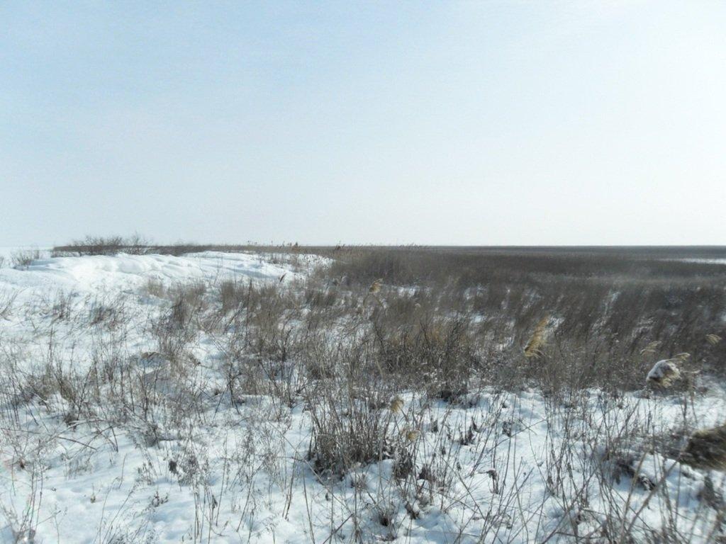 В снегах, путешествие, Ачуевская коса, Азовское море, февраль... 006. 006
