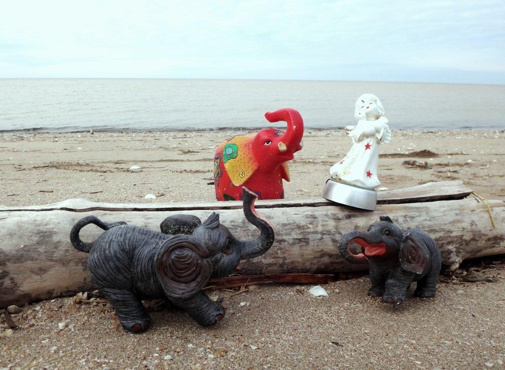 У моря Азовского, в походе, декабрь, ... и слоники... 002. 008