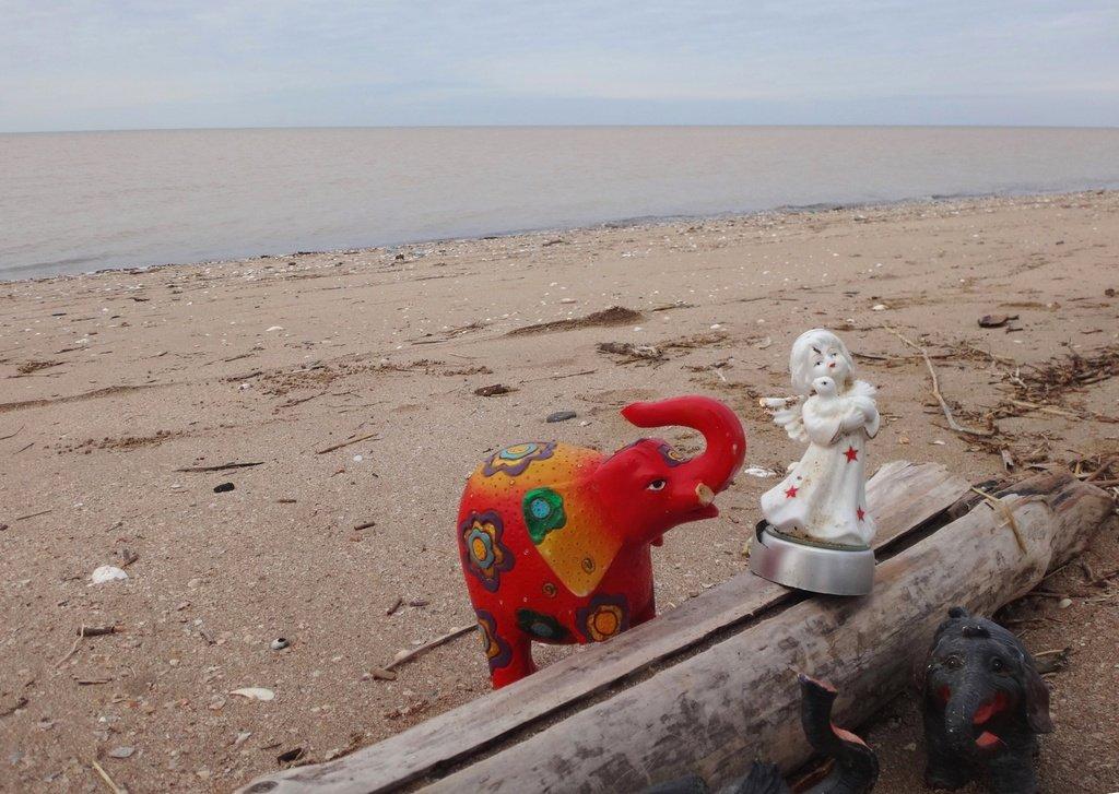 У моря Азовского, в походе, декабрь, ... и слоники... 002. 012