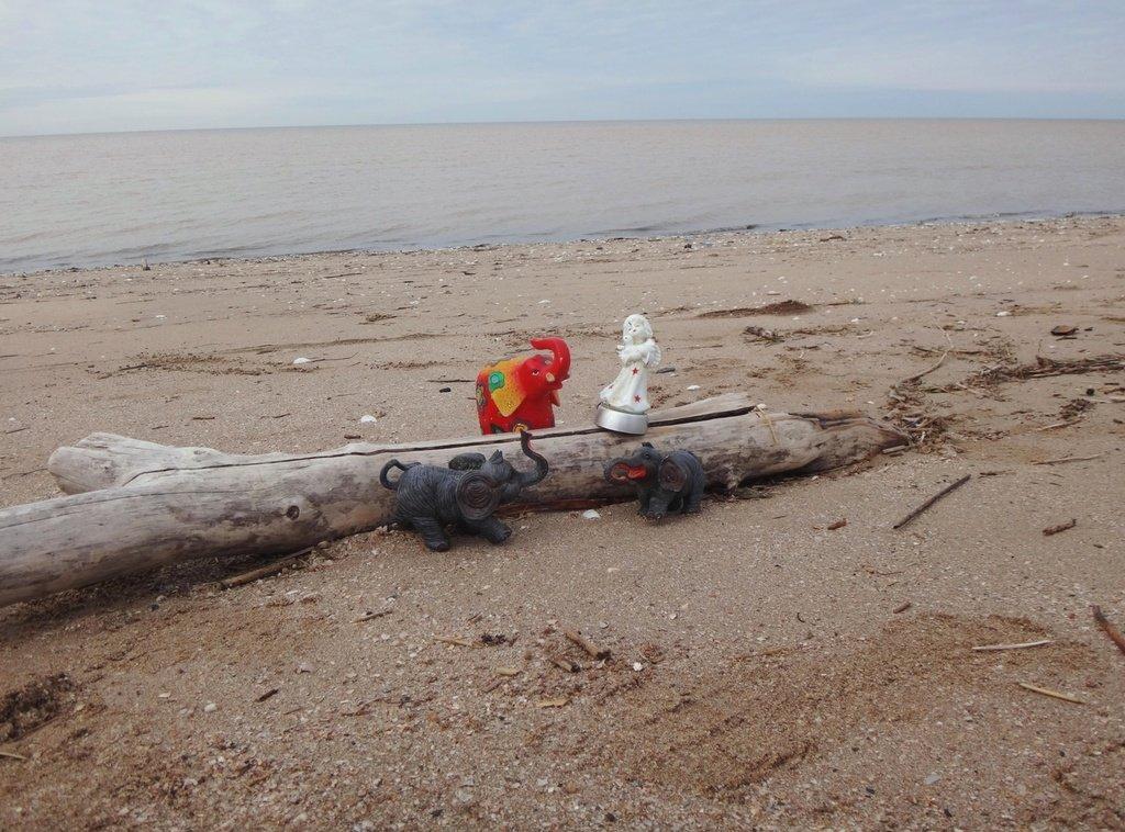 У моря Азовского, в походе, декабрь, ... и слоники... 002. 007
