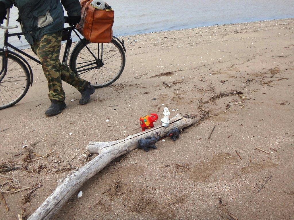 У моря Азовского, в походе, декабрь, ... и слоники... 002. 006