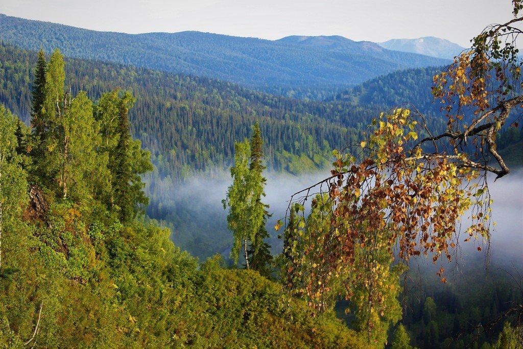 Рассеивающийся туман